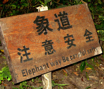 Strange English Signs along The California Native Yunan China Tours - Sign at Wild Elephant Preserve in Jing Hong Warning of Salty Trail