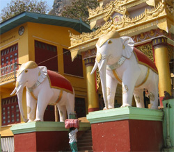 Statues of White Elephants