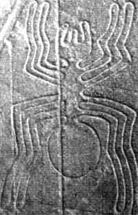 A giant spider on the Nazca Plain